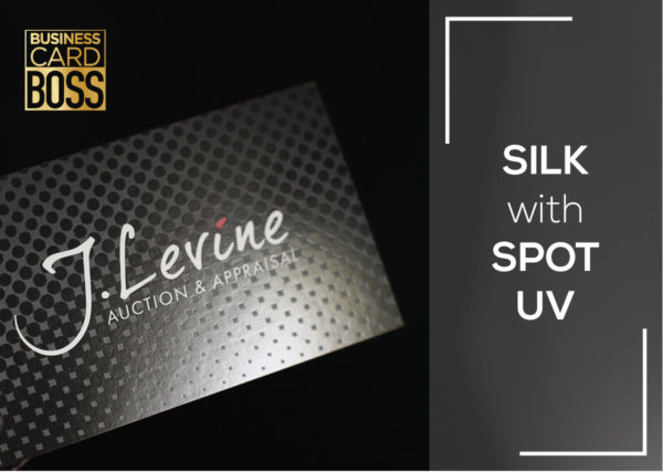 SILK WITH SPOT UV BUSINESS CARDS